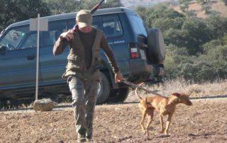 caza-menor-perro-2