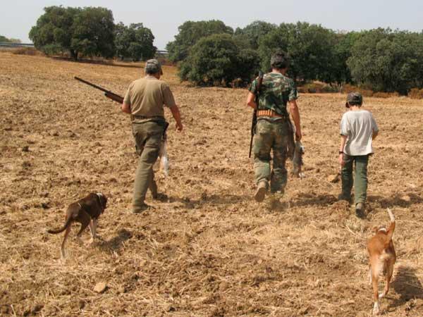 caza-menor-perro-3