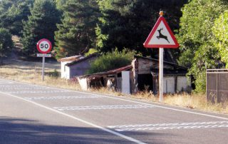 accidentes-trafico-3