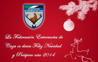 christmas-fedexcaza-2013