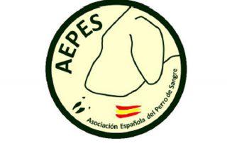 aepes-logo