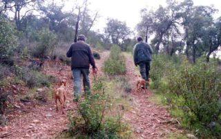 Cazadores-caminando
