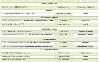calendario-competiciones-2015