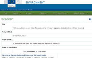 consulta-directiva-europea