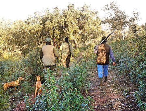 Causas y principales lesiones en la actividad físico-deportiva de la caza