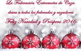 Christmas-Fedexcaza-web-15-16