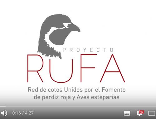 FEDEXCAZA participa en el proyecto RUFA de la Fundación Artemisan para la recuperación de la Perdiz y otras aves esteparias en España