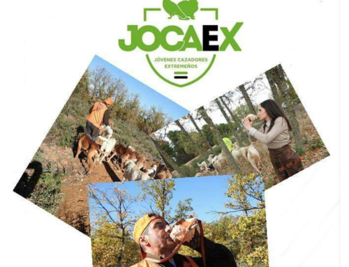 Rehalero por un día – Campaña de JOCAEX