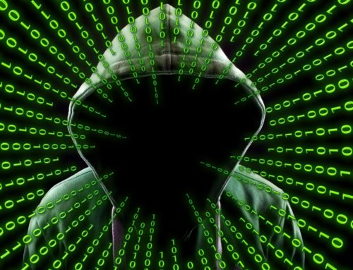 La RFEC abre un email para que los cazadores envíen los insultos y amenazas que sufren en redes sociales