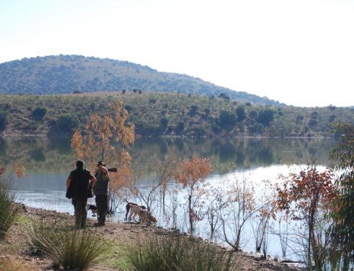 FEDEXCAZA llama a la calma a las sociedades locales de cazadores tras una reunión con la Junta de Extremadura