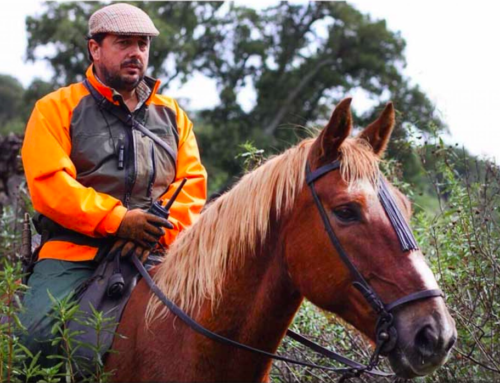 FEDEXCAZA ofrece un seguro de RC para los daños producidos por caballos durante la práctica de la caza