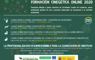 Cursos formación online de la Junta 2020
