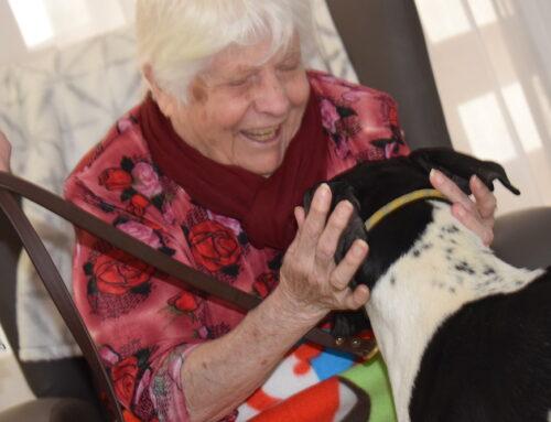 FEDEXCAZA celebra una jornada de terapia con perros de caza en una residencia de mayores