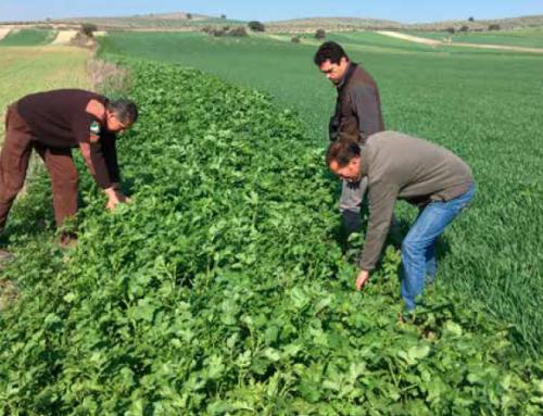 FEDEXCAZA presenta a la Junta un plan de medidas para recuperar la biodiversidad a través de la PAC