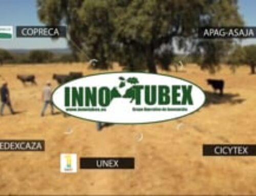 INNOTUBEX destaca en un vídeo la importancia del control de la tuberculosis en especies ganaderas y cinegéticas