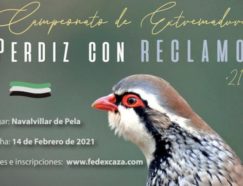 Navalvillar de Pela acogerá el 14 de febrero el Campeonato de Extremadura de Perdiz con Reclamo