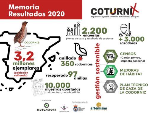 La codorniz mantiene un buen nivel de abundancia en España, con una estimación de 3,2 millones de ejemplares